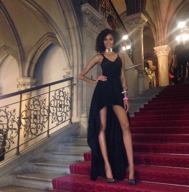 Cindy Bruna @ Life Ball 2015 in Vienna #FightAgainstAIDS