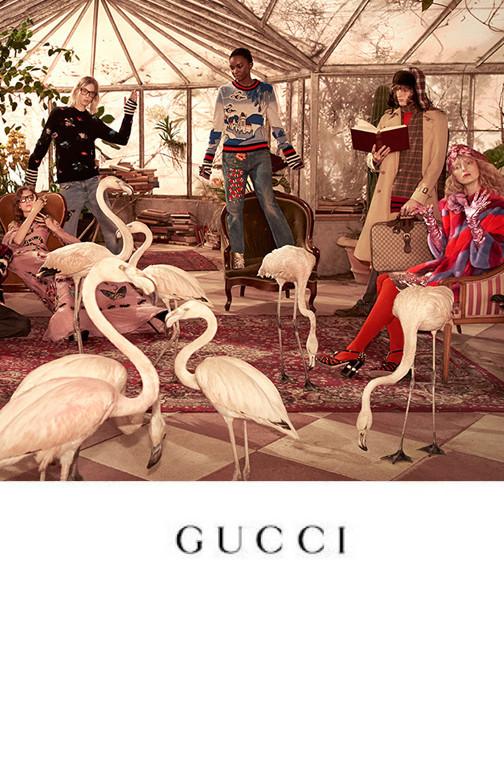 Anton for Gucci PreFall 2016 Campaign