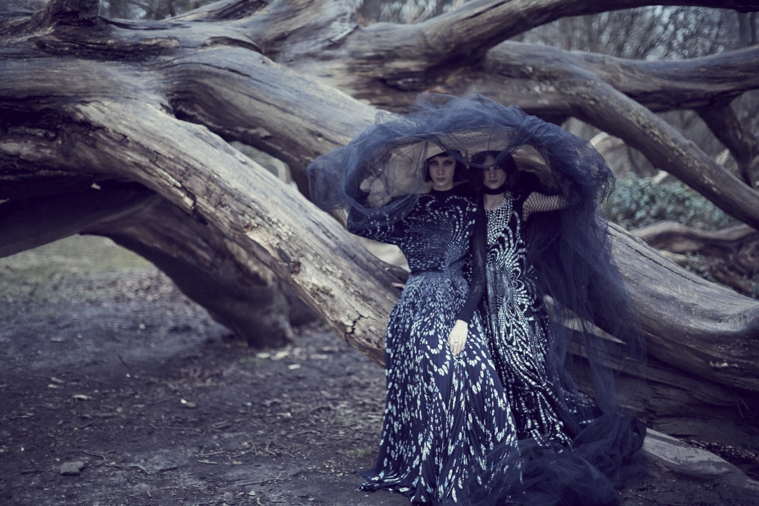 Love Magazine: Into The Woods