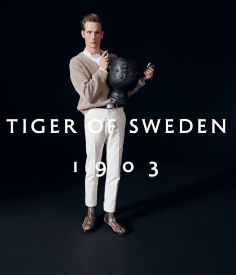 FELIX GESNOUIN : TIGER OF SWEDEN